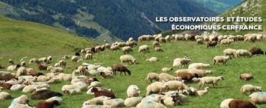 Tendances agricoles 2017 en Occitanie - Communiqué de presse Cerfrance Janvier 2018